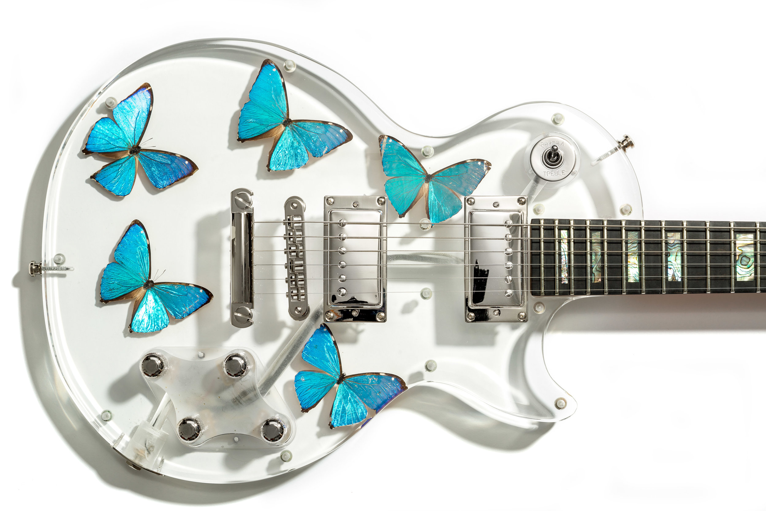 James-Lamerton-Butterfly-019.jpg
