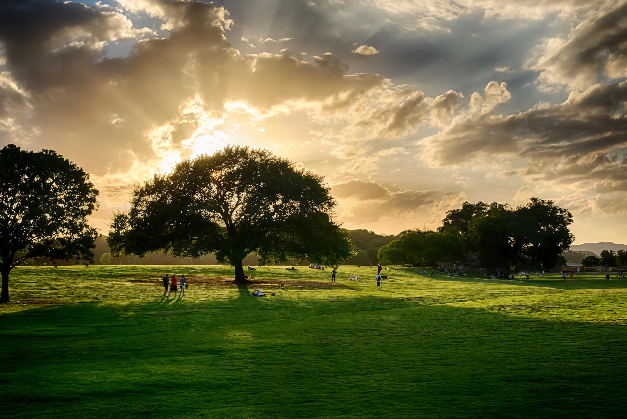 Sunset at Zilker Park