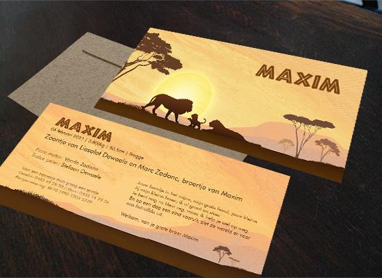 First-image-geboortekaartje-Maxim-variatie-leeuwen.jpg