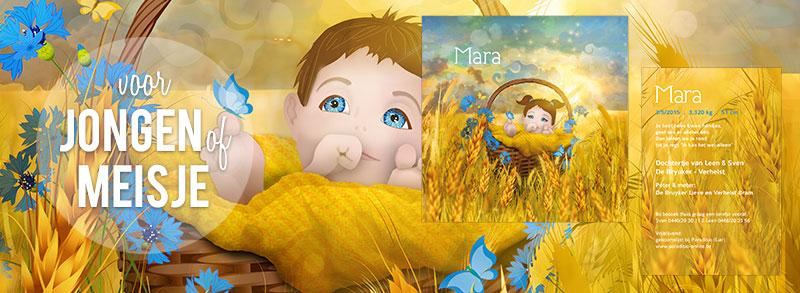second-image-mara-geboortekaartje-by-xantifee.jpg
