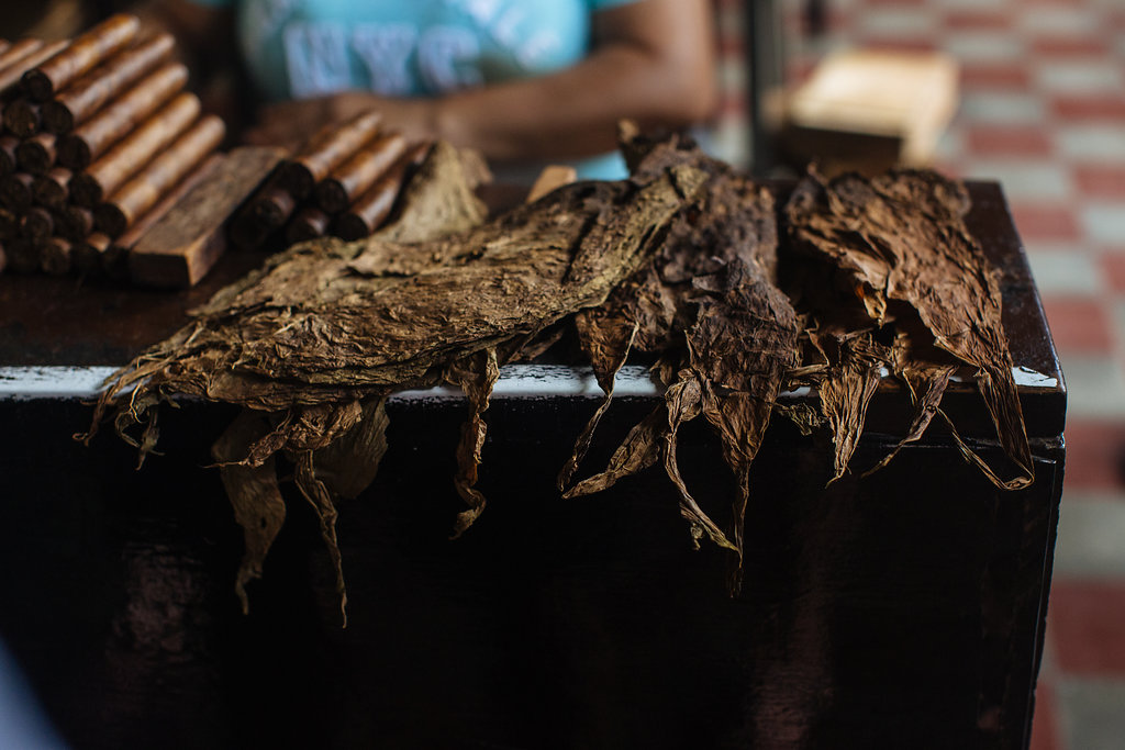 nicaragua-granada-donaelba-cigars-tobacco-leaves.jpg