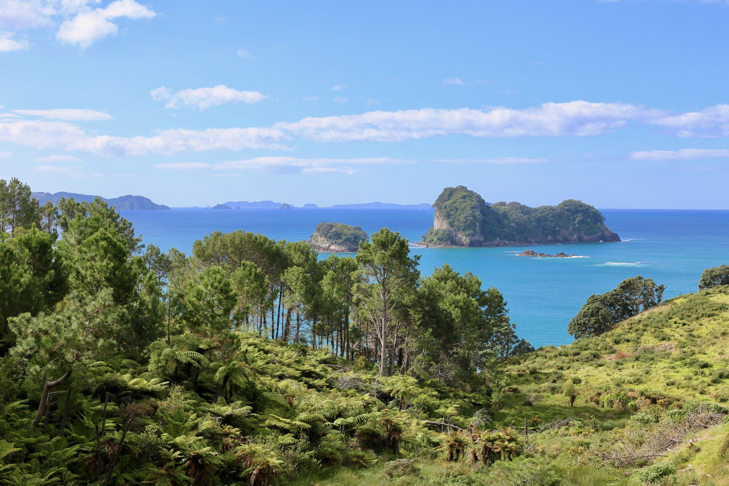 new-zealand-north-island-itinerary-6.jpg