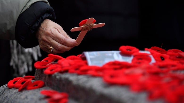There are dozens of Remembrance Day ceremonies being held throughout B.C. on Nov. 11. (Justin Tang/Canadian Press)