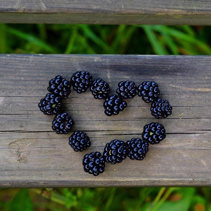 picture blakberry heart.png
