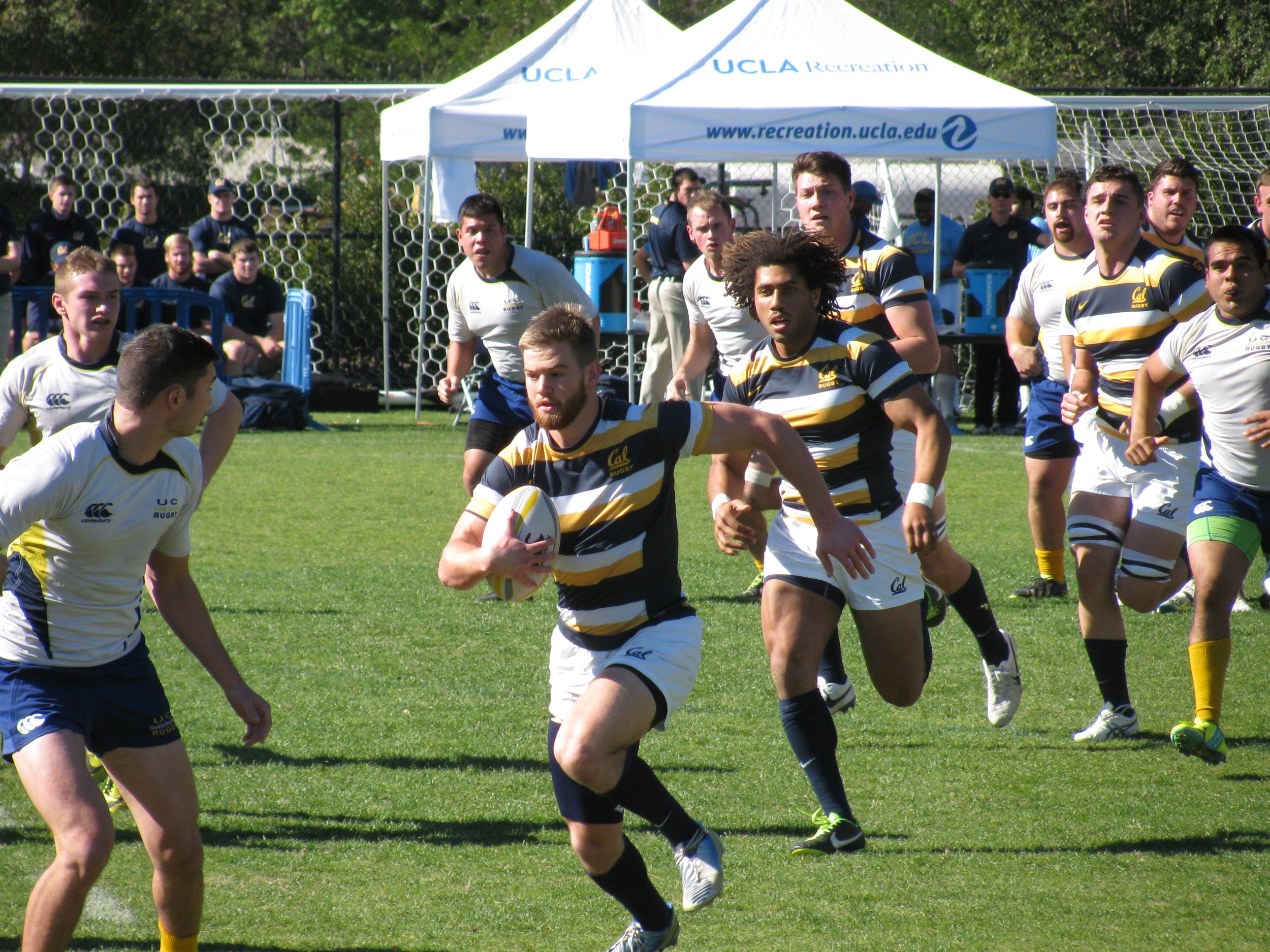 Cal Rugby, 28 time national champions