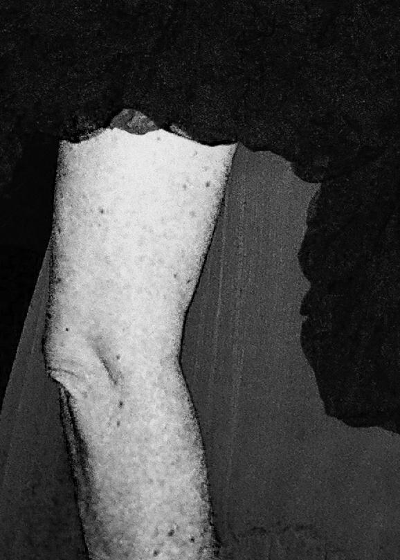 arm,New York,2014