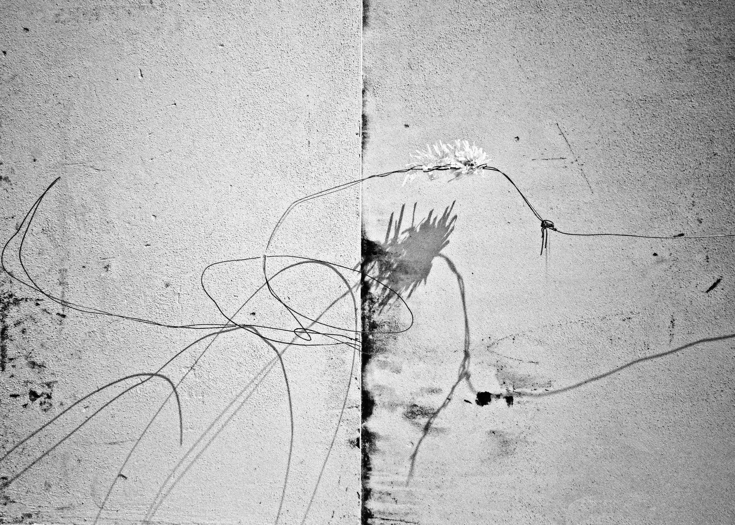 wire,Lisbon,2016
