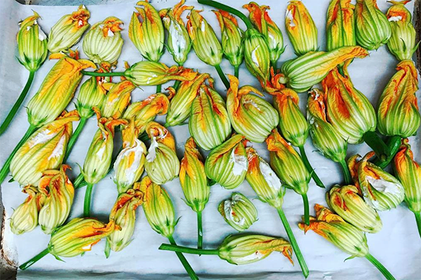 Zucchini Flowers Banner 6x4.png
