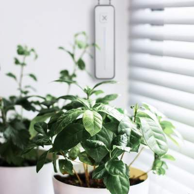 PLANT CARE  Weekdays @ 1:00pm: Open fully Weekdays @ 2:00pm: Close fully   Plants have feelings too! Give your plants all the sunlight they need by automating your shades to open up throughout the day.