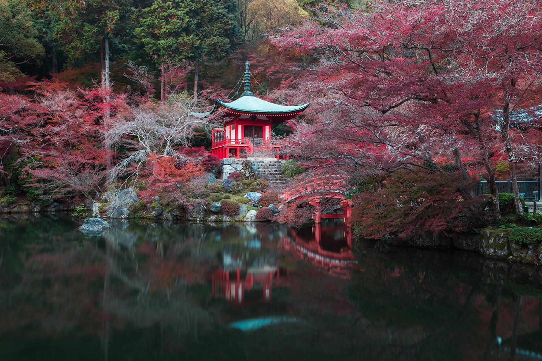 Daigo-ji in autumn | Kyoto, Japan