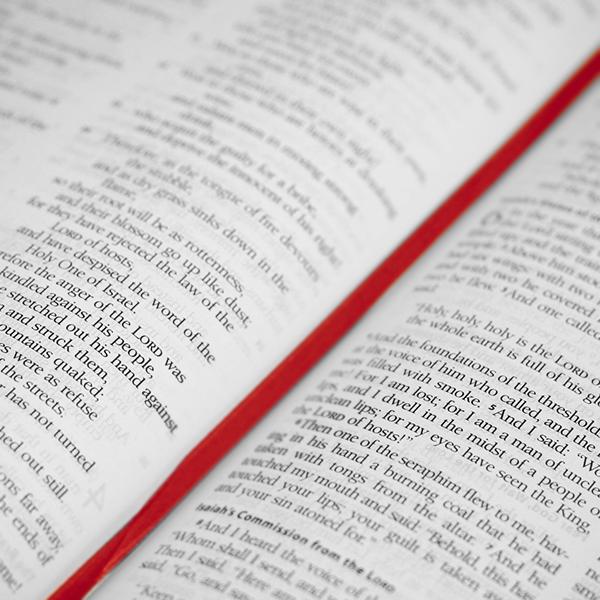 Bible-David_Goa.jpg