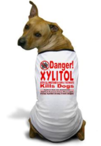 xylitol kills dogs.png