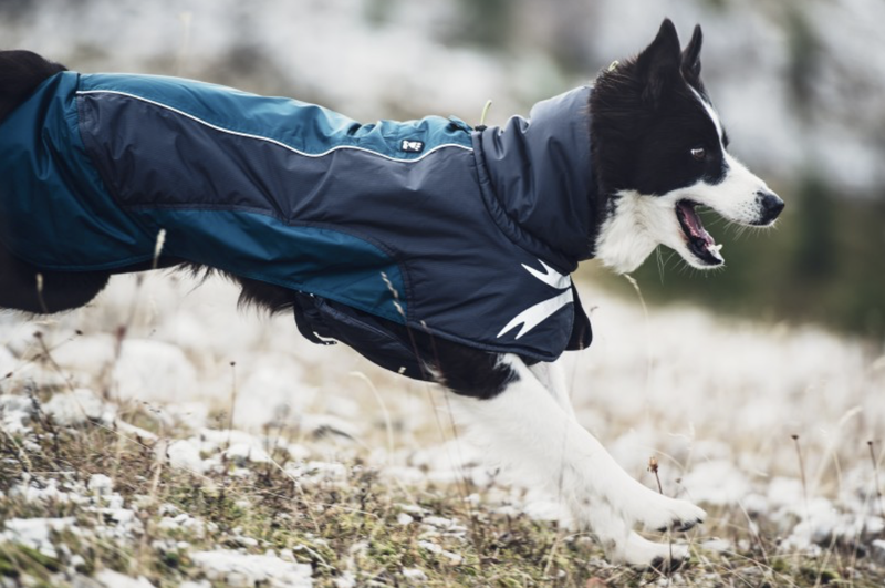 The Ultimate Warmer jacket from Hurtta.com. Photo by Hurtta.