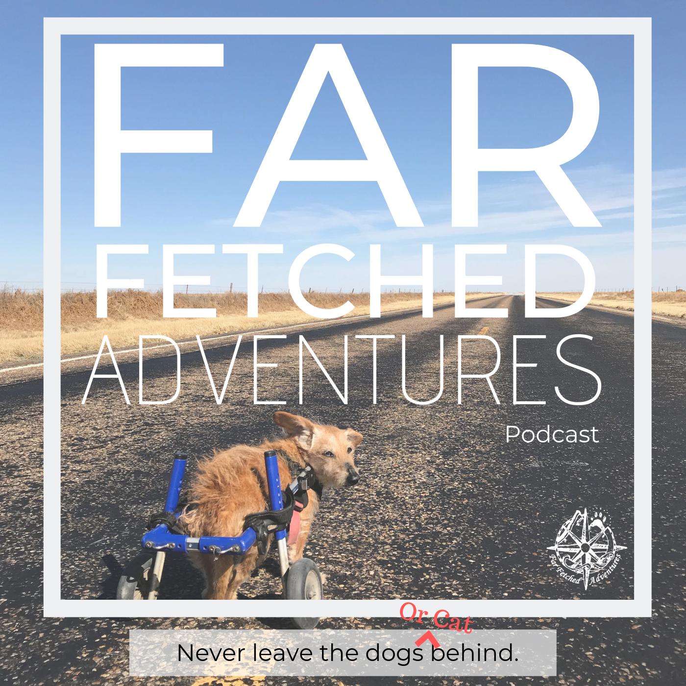 FFA Podcast ARt.png