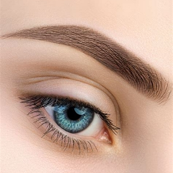 Shading/ Ombre' Brows -