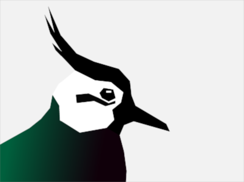 Lapwing_800x600.png
