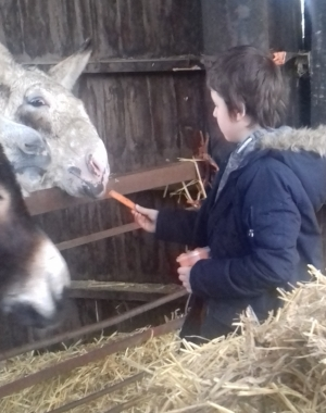 Nathan (year 6) at a care farm - part of his personal development programme.