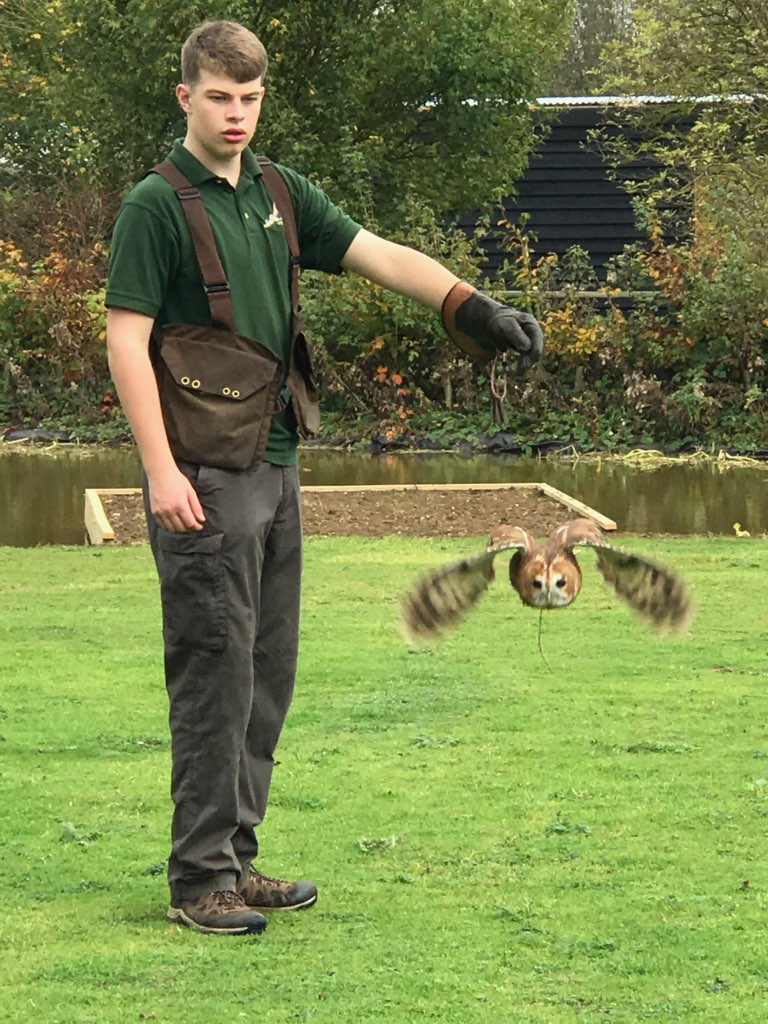 Owl Sanctuary.jpg