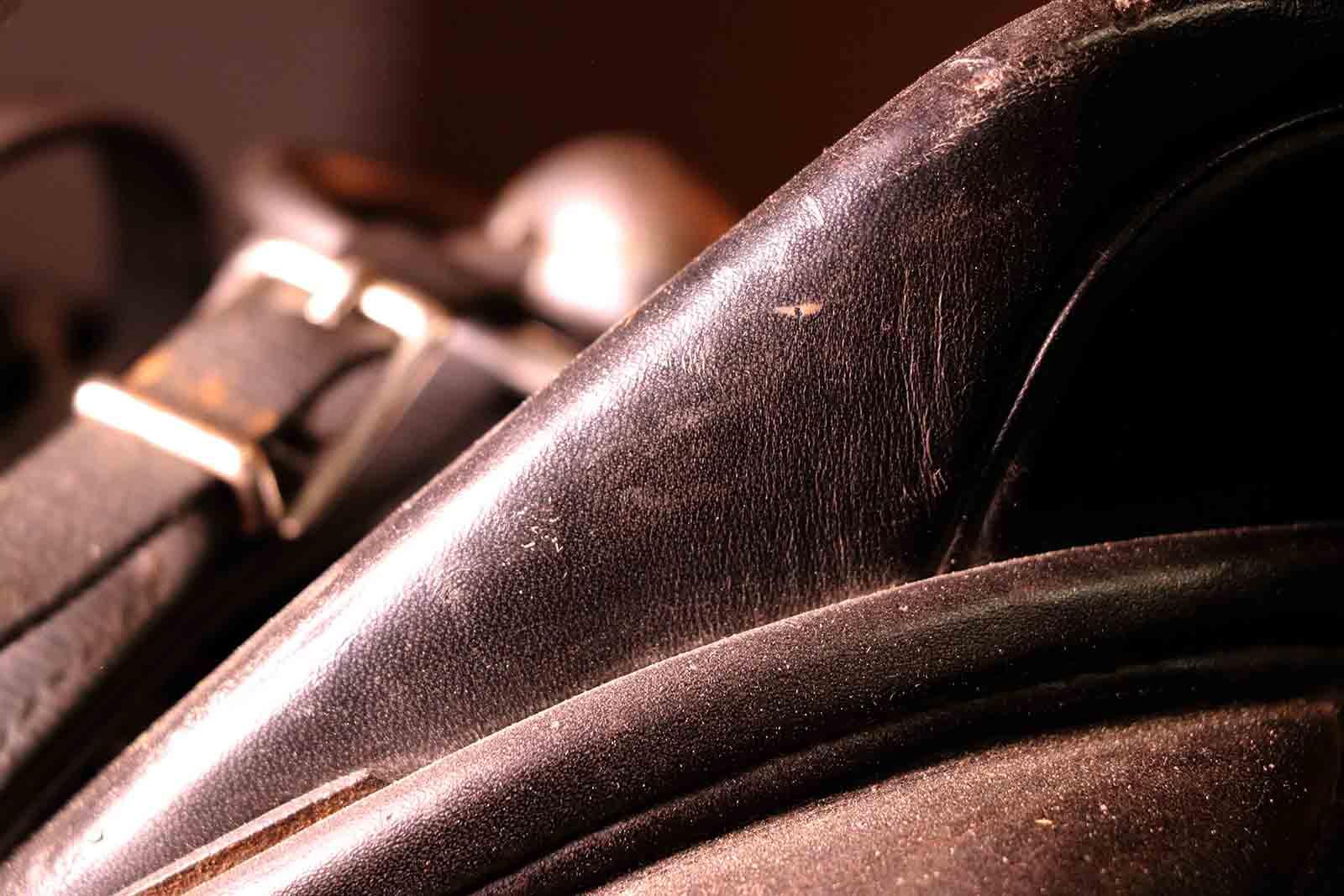 Gamston_Wood_Equestrian_livery_coaching_45_web.jpg