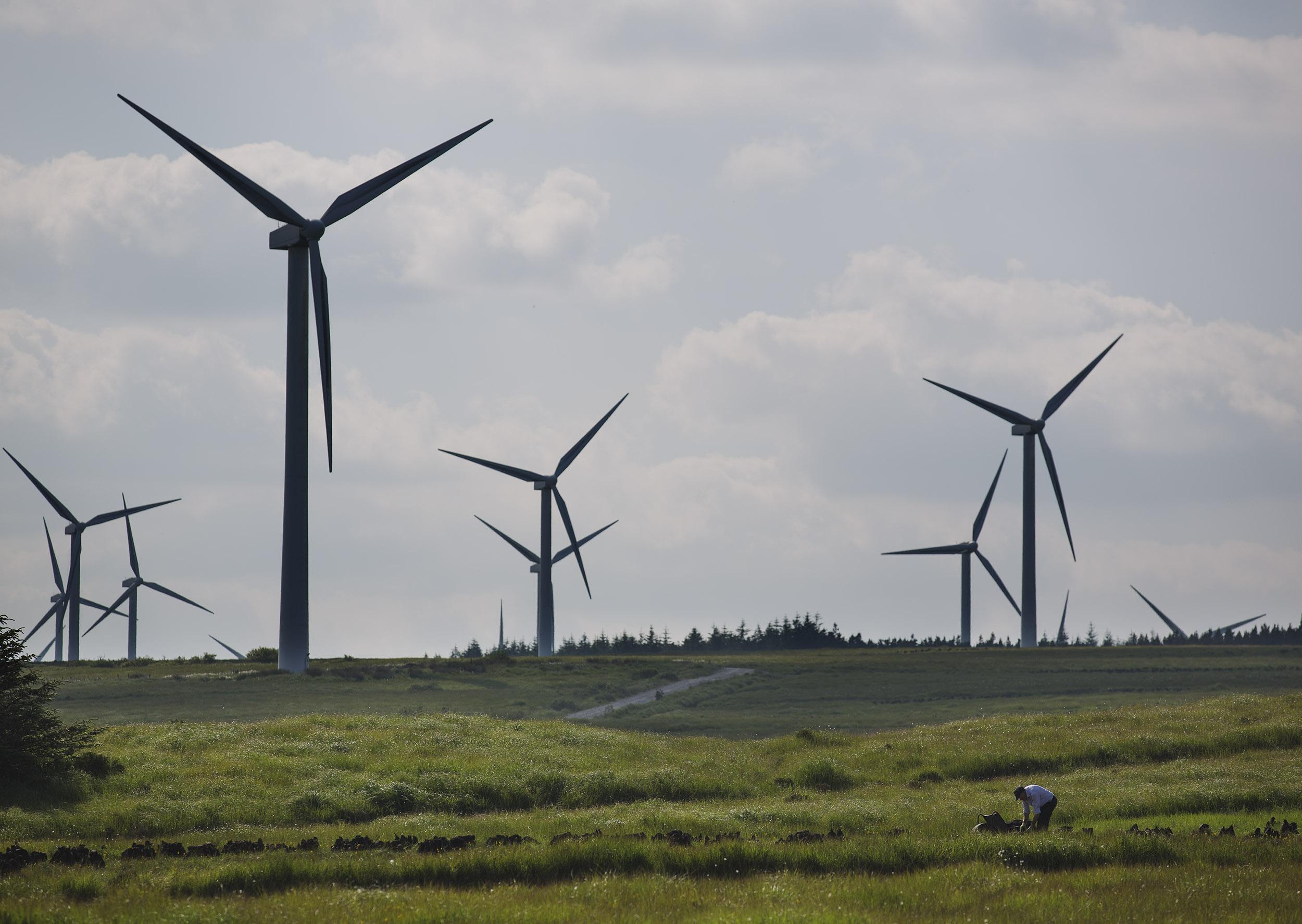 Landscape-Wind-Turbine-Turf-Cutter-Bolger-Photography.jpg