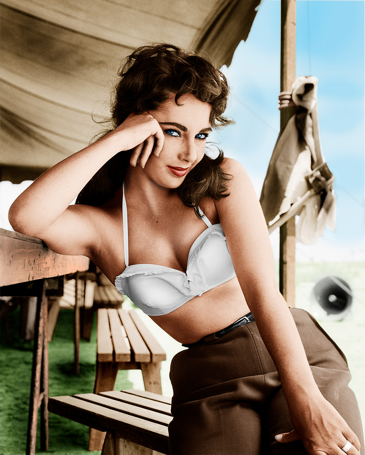 Liz-Taylor-colour-up.jpg