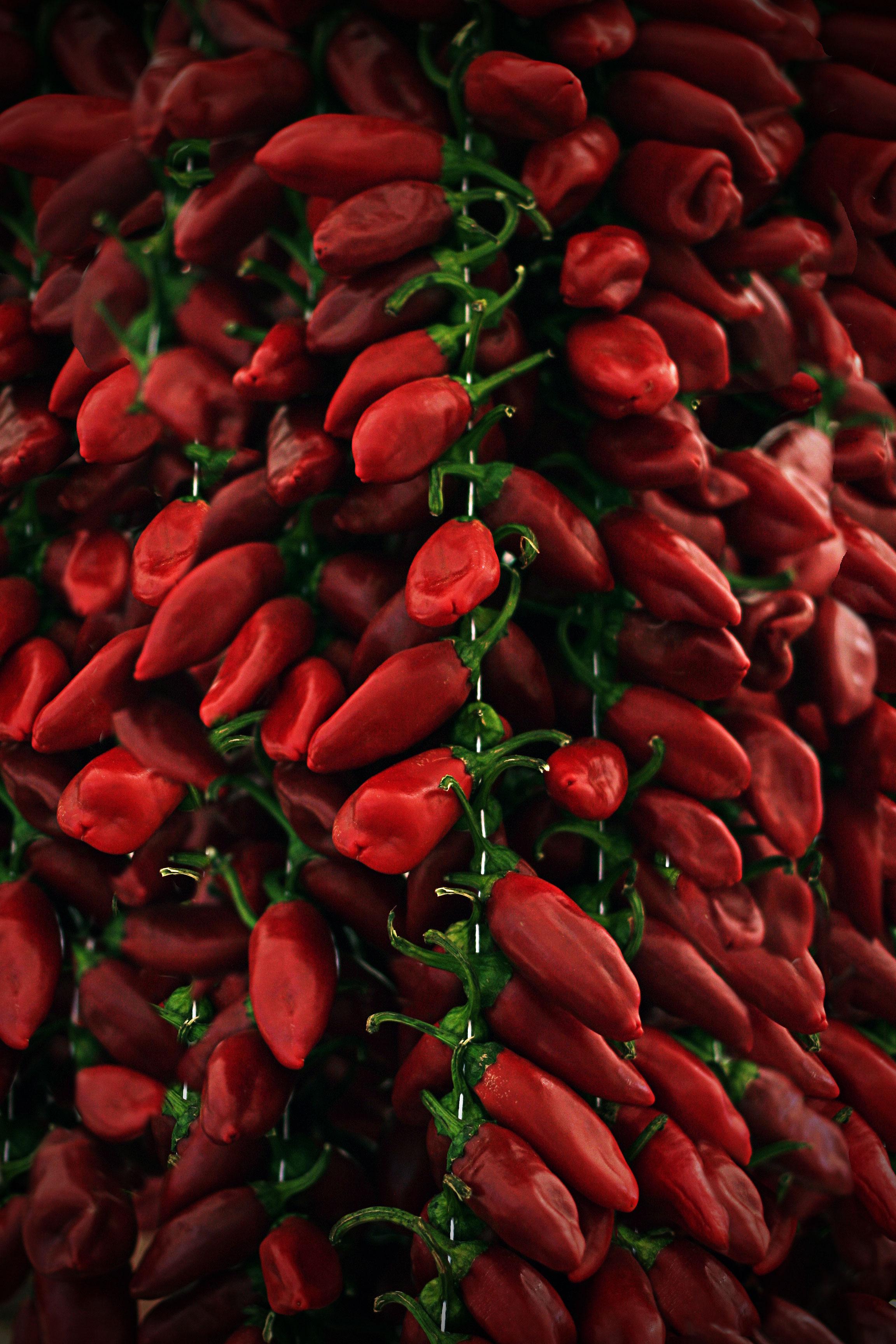 Chillies-Cala-Mijas-market.jpg