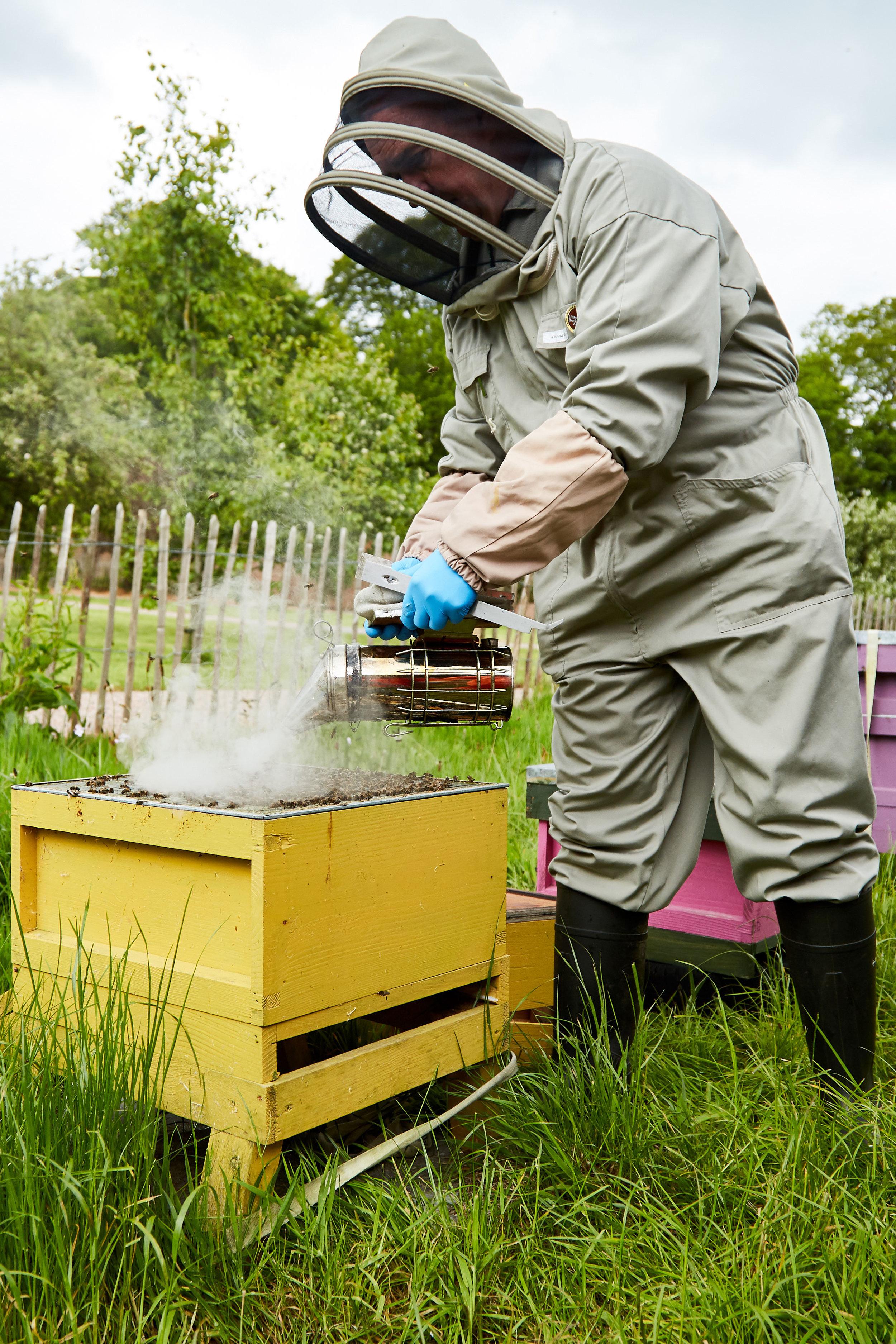 Bee-Keeping022May-19-2019.jpg