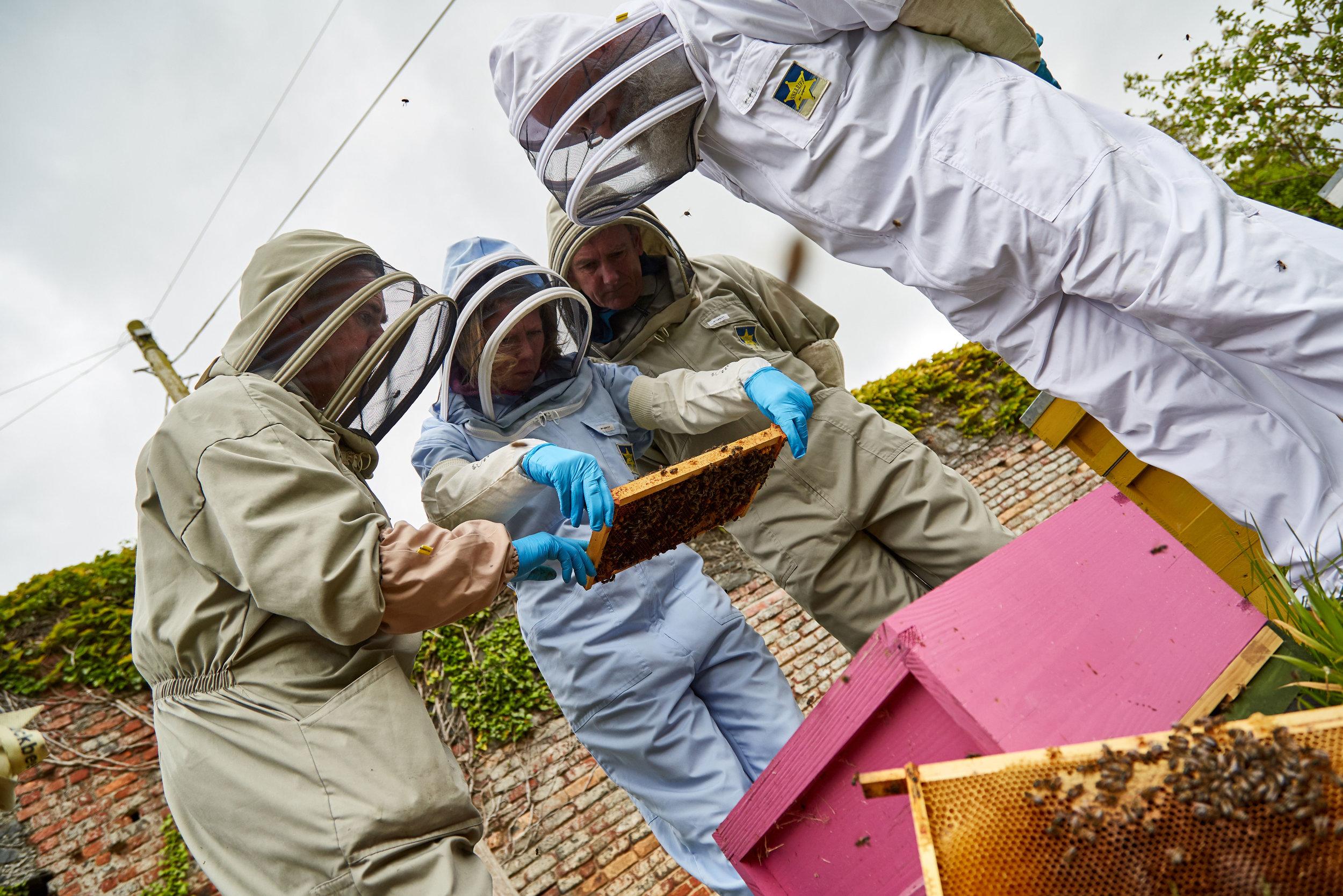 Bee-Keeping546May-19-2019.jpg