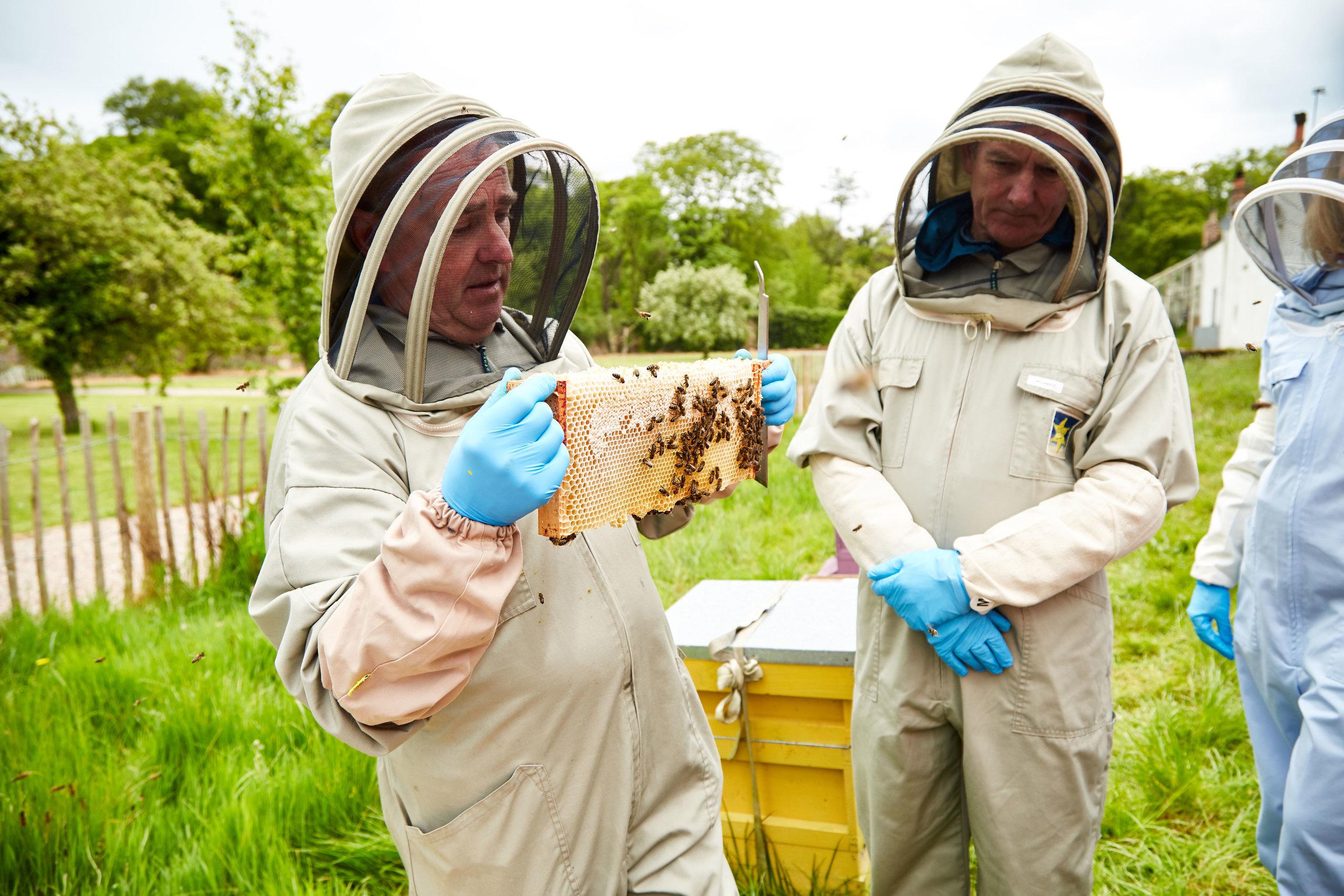 Bee-Keeping710May-19-2019.jpg