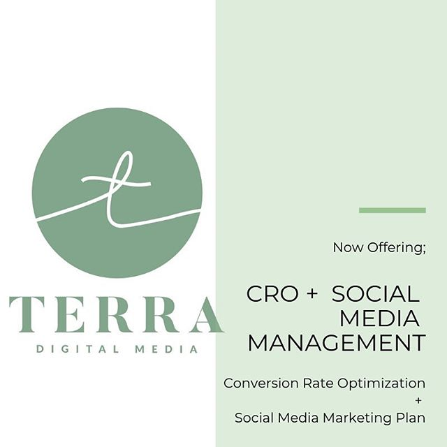 We have ONE client opening for this year and we are offering a free CRO consultation alongside our social media/PR packages. (see latest blog post on why you need CRO!) ✨For those interested: hello@terradigitalmedia.com