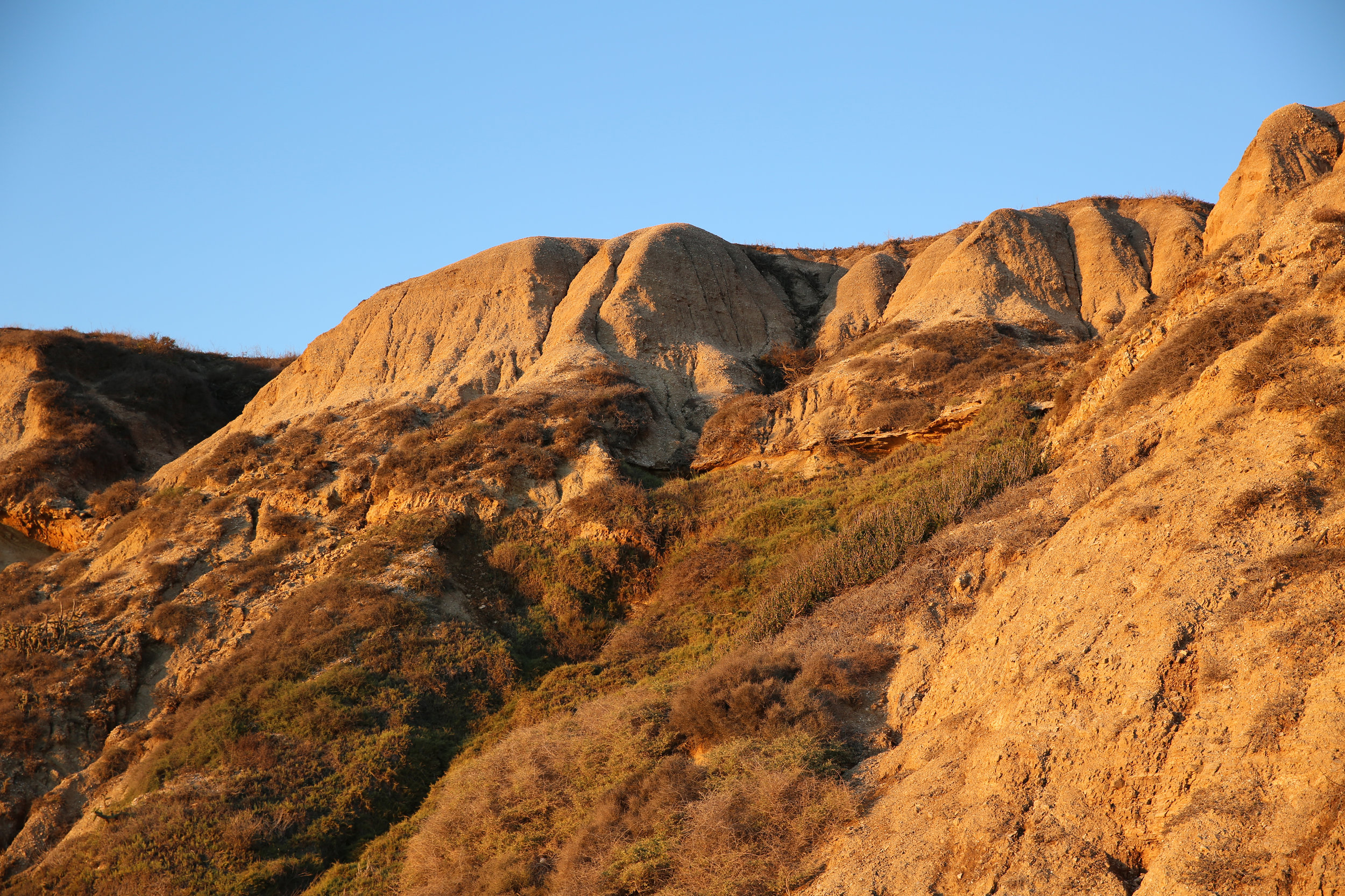 These golden cliffs are filled with native vegetation that sustains wildlife.