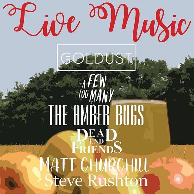 On Saturday I'm playing with @blindspotgigs at the #stowsausagecider festival. On at 4pm, come down!  #walthamstow #e17