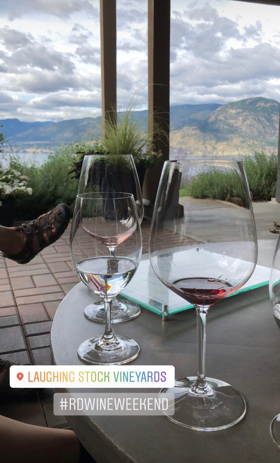 Okanagan wine weekend. Laughing Stock Vineyards.
