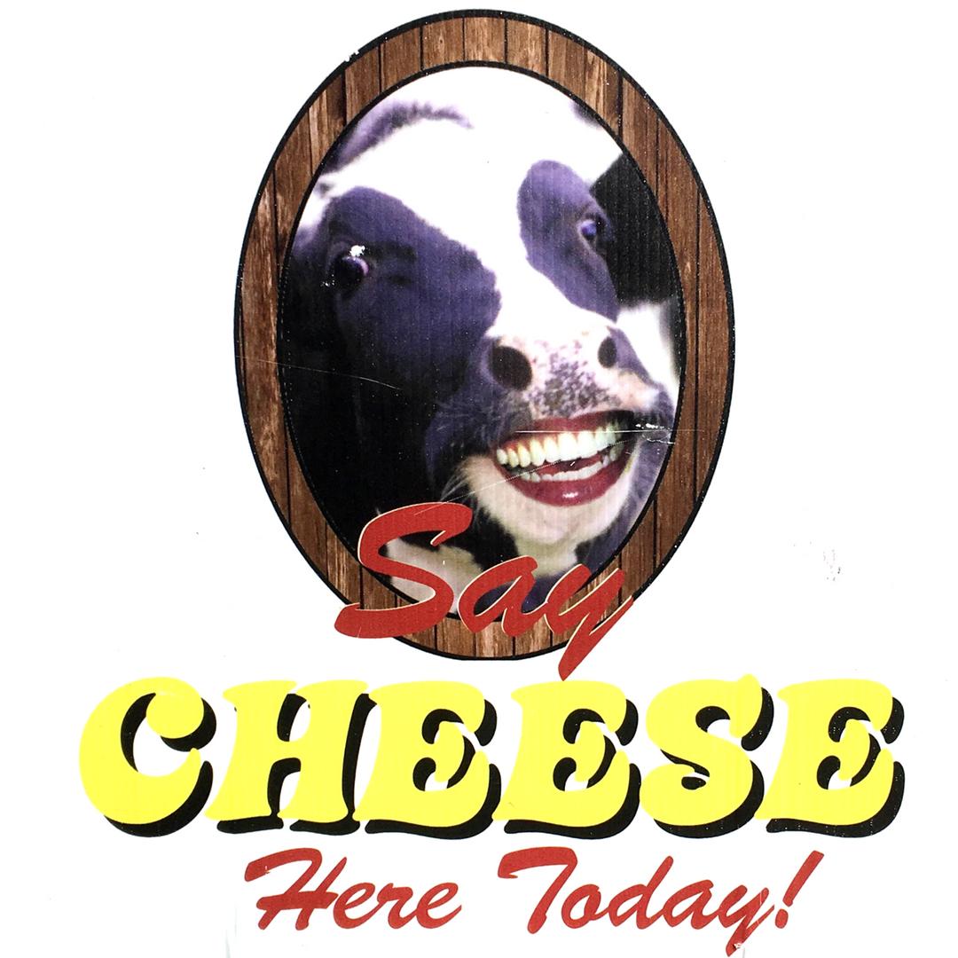 KFM - Say Cheese (Square).jpg