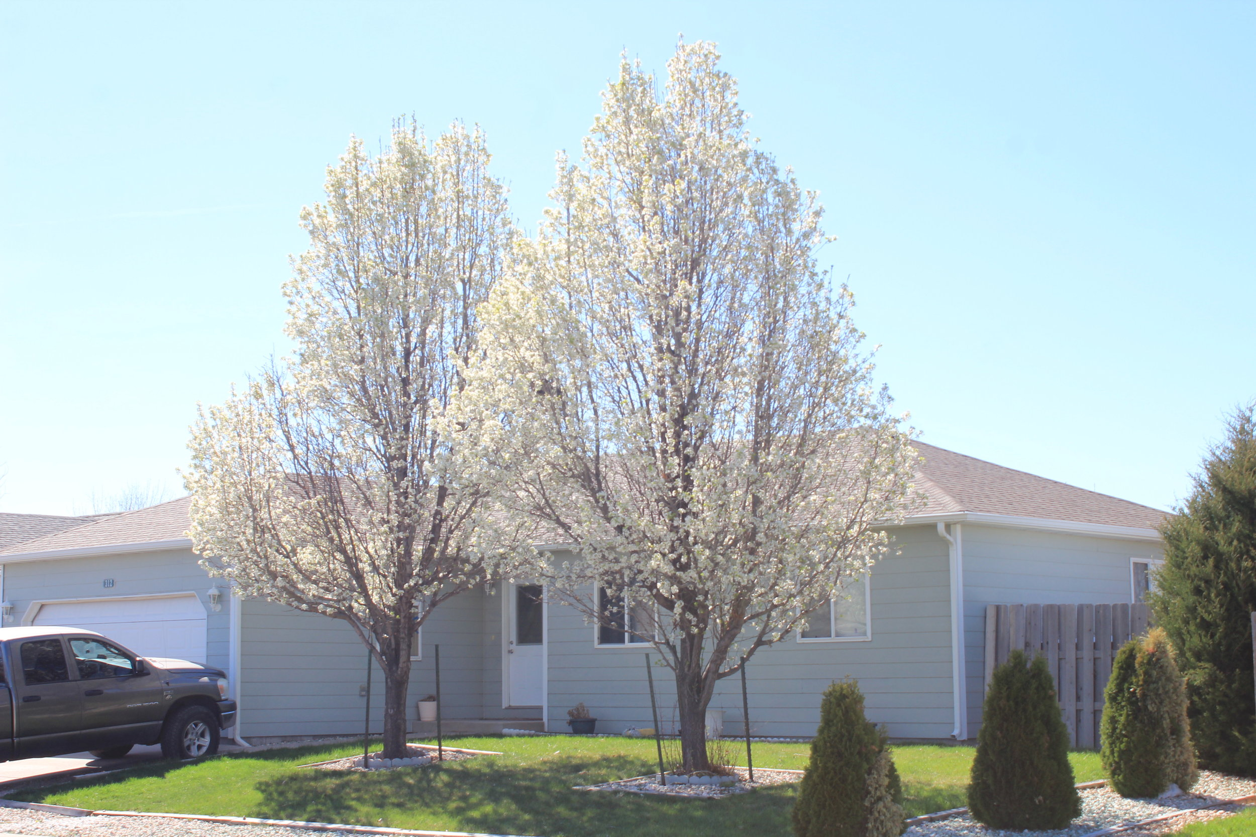 312 Gateway Ave, Fort Morgan - 3 Bed,2 Bath 1864 Sq. Ft.Listed for : $239,900 Sold for:$230,000