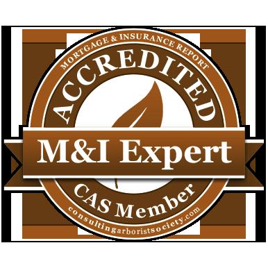 M&I-certified-CAS-member.png