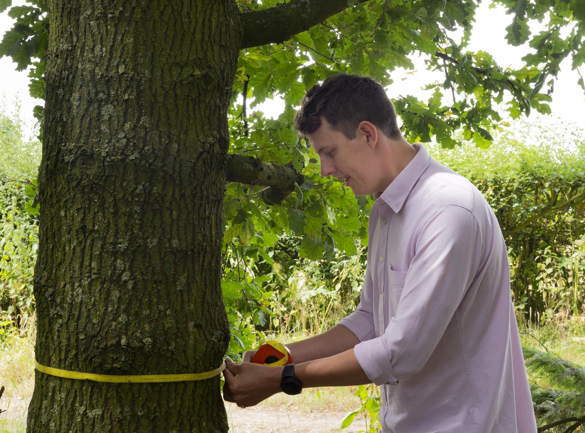 CAVAT tree measure.JPG