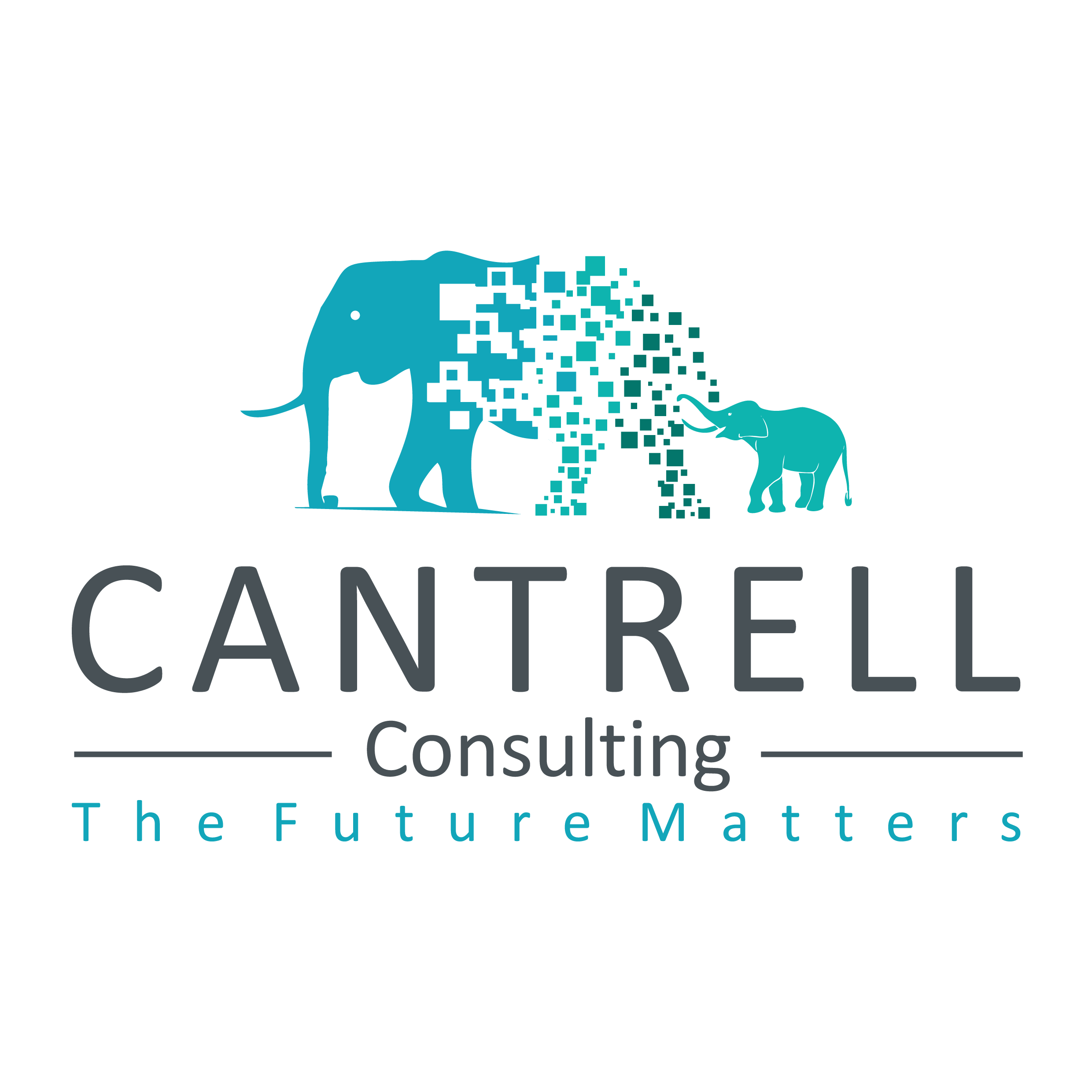 cantrellConsulting_Logo_Full-01.png