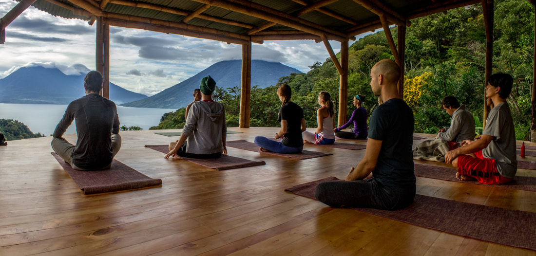 meditation, yoga forest, john early blog post