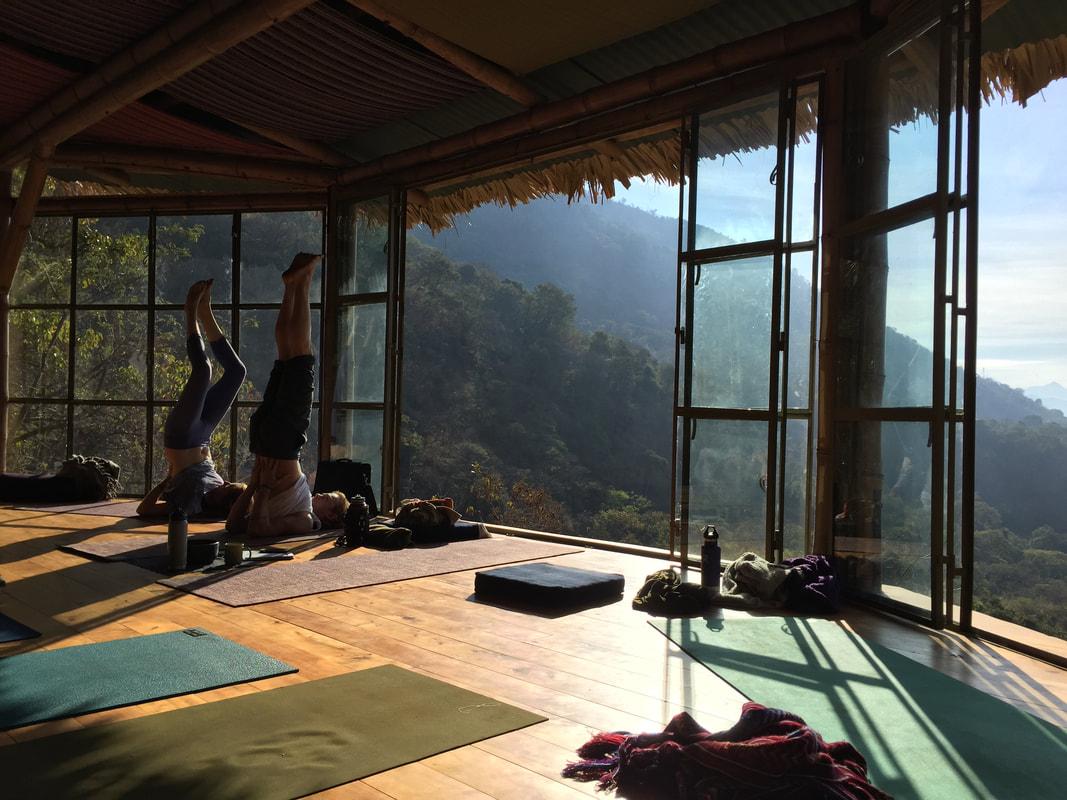 kula grad series, yoga forest, morning yoga