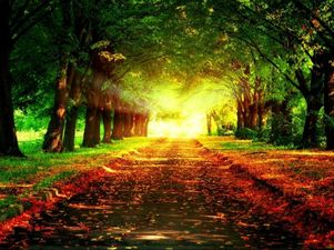 widening path, blog post