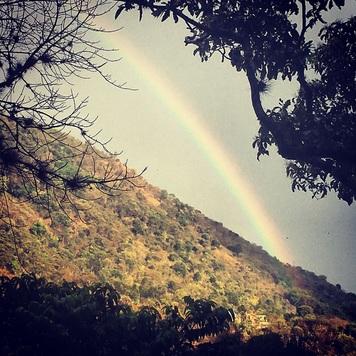 rainbow practically present randi