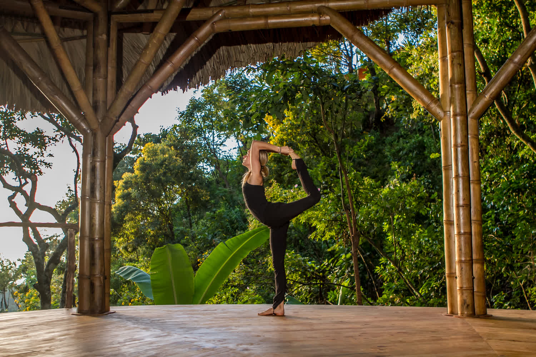 4817_YogaForest-Yoga-bradleythomas-5725_1500x1000.jpg