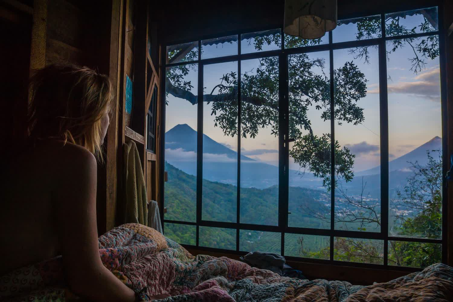 3141_treehouse view from the bed-Dan Pryor Photography_1500x1000.jpg