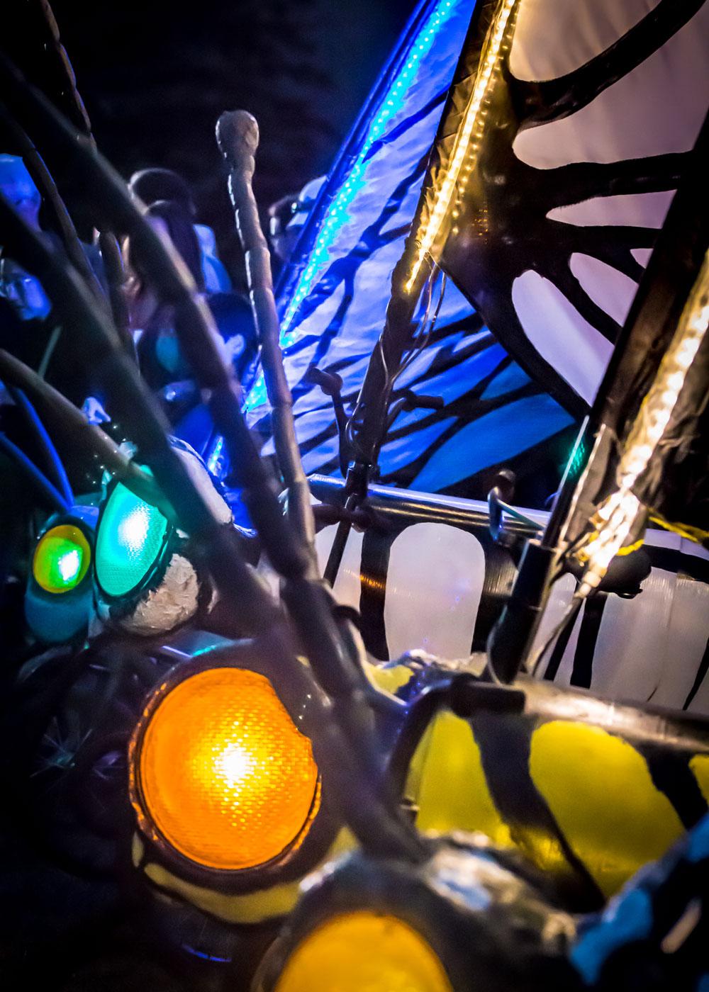 GIANT butterflies - By The Bike Zoo | Breckenridge 2015
