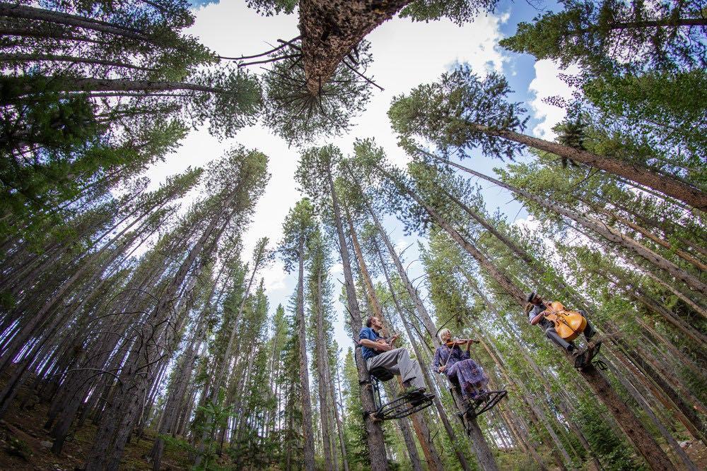 Tree-o - With Kevin Larkin, Karen Lauffer + Russick Smith | Breckenridge 2018