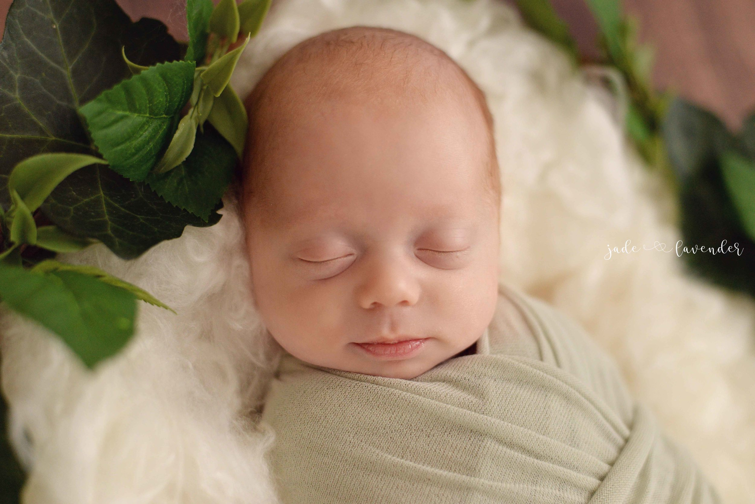 baby-photography-newborn-family-photos-spokane-washington.jpg