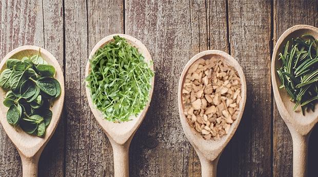 herb-spice-healthy.jpg