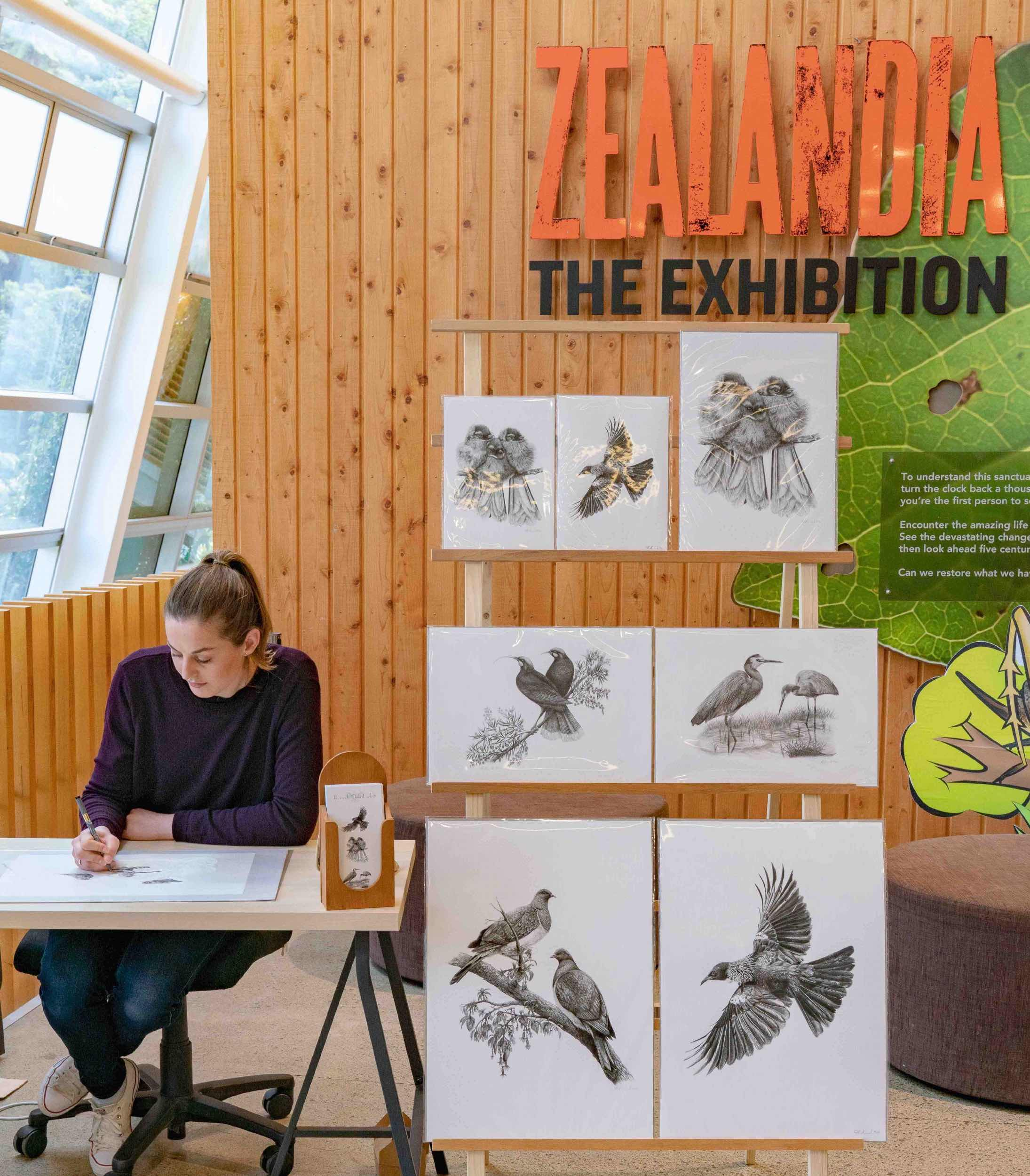 Hannah draws at Zealandia with prints on display.jpg