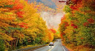 Autumn DriveAbout